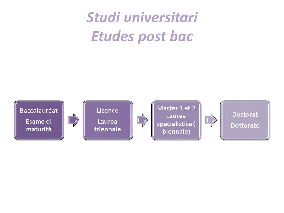Studi universitari Etudes post bac