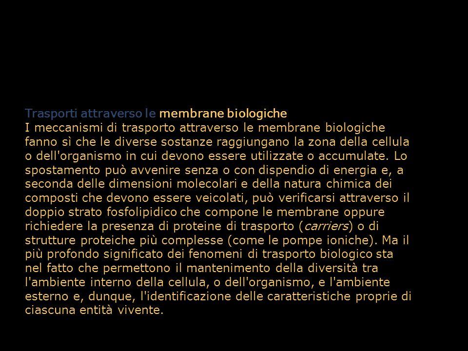 Trasporti attraverso le membrane biologiche.