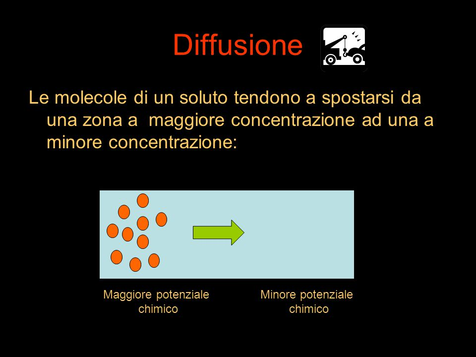 Diffusione Le molecole di un soluto tendono a spostarsi da una zona a maggiore concentrazione ad una a minore concentrazione: