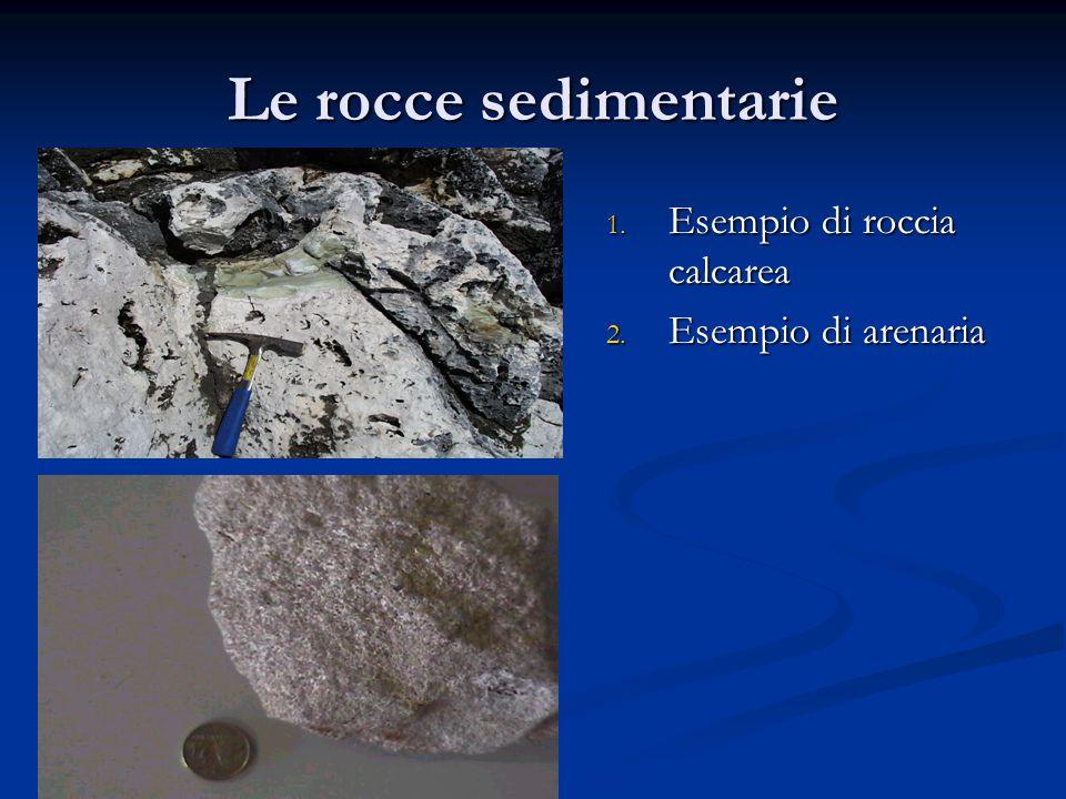 Le rocce sedimentarie Esempio di roccia calcarea Esempio di arenaria