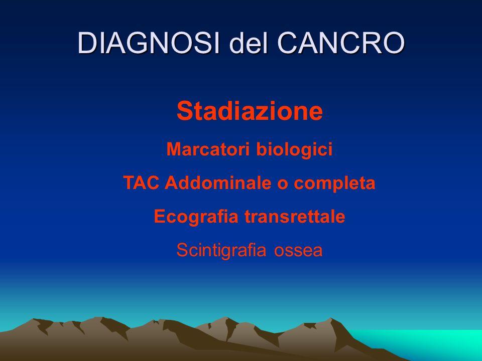 TAC Addominale o completa Ecografia transrettale