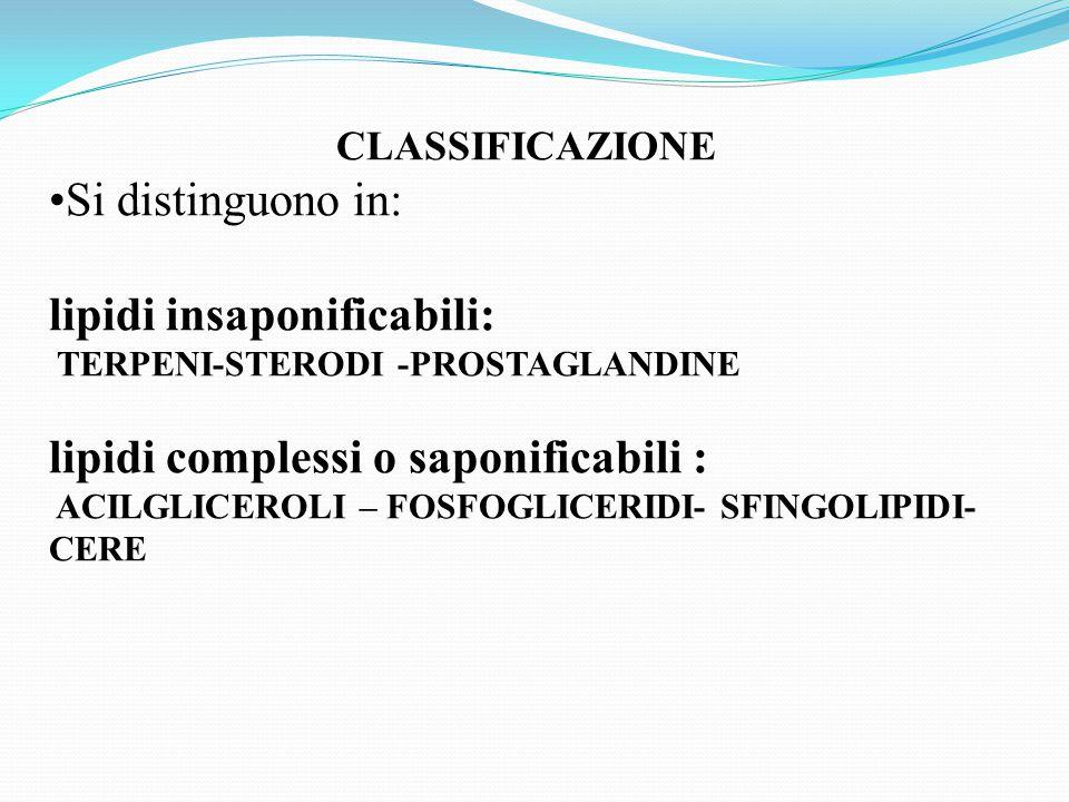 lipidi insaponificabili: