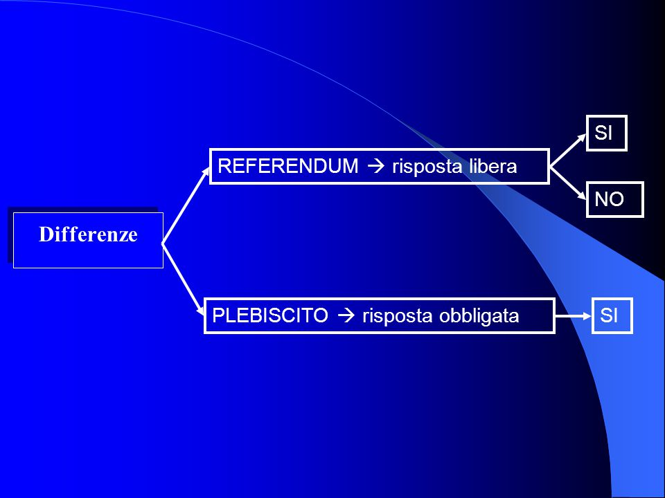 Differenze SI REFERENDUM  risposta libera NO