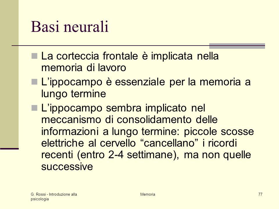 Basi neurali La corteccia frontale è implicata nella memoria di lavoro