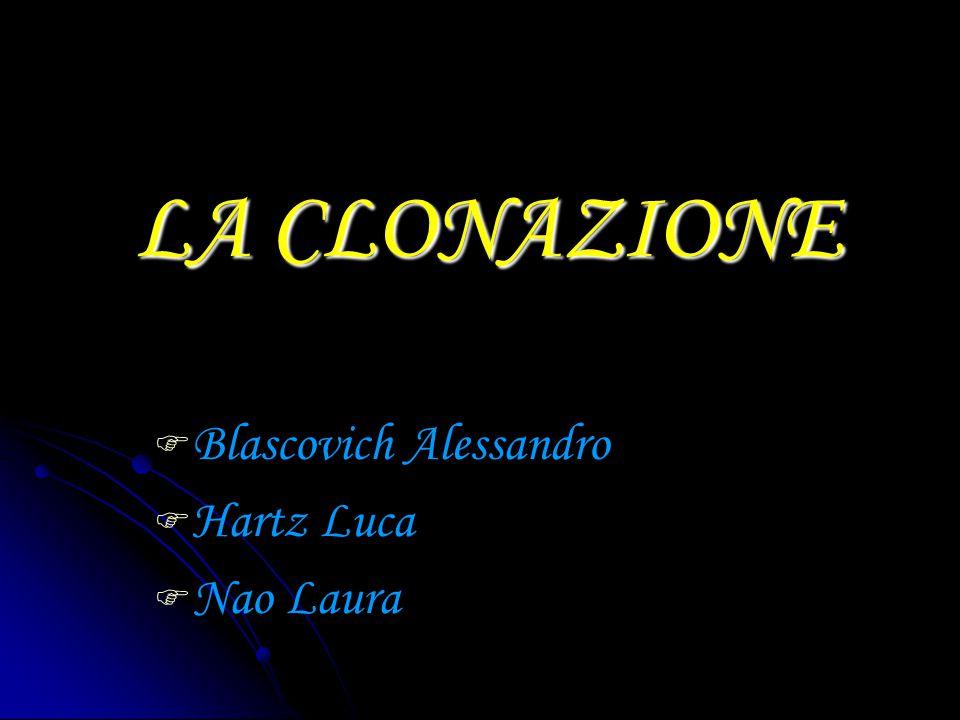 Blascovich Alessandro Hartz Luca Nao Laura