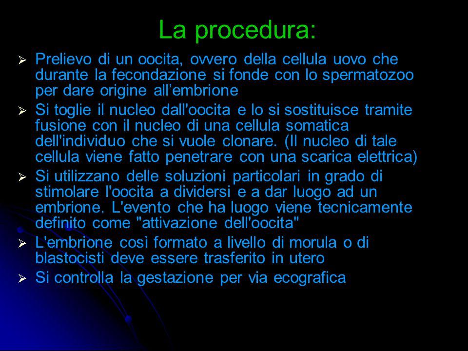La procedura: Prelievo di un oocita, ovvero della cellula uovo che durante la fecondazione si fonde con lo spermatozoo per dare origine all'embrione.