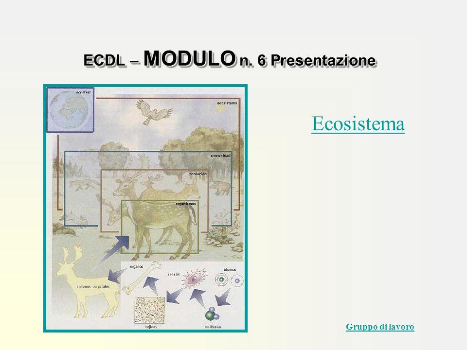 ECDL – MODULO n. 6 Presentazione