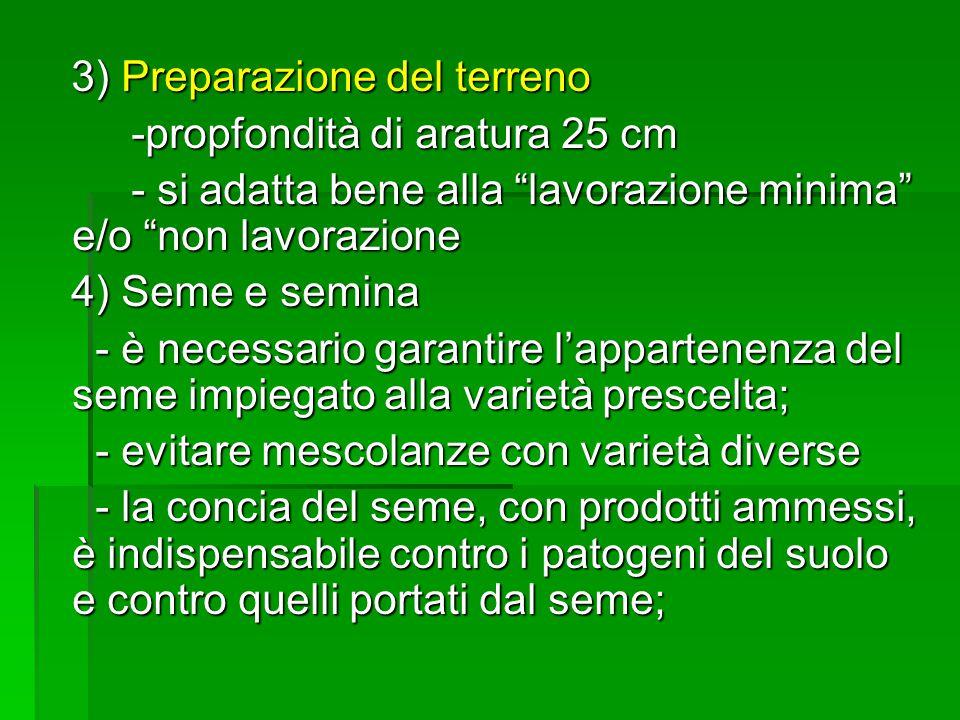 3) Preparazione del terreno
