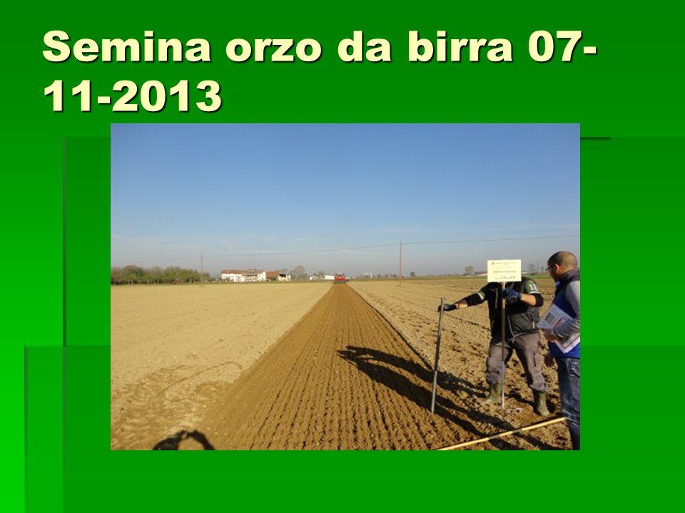 Semina orzo da birra 07-11-2013