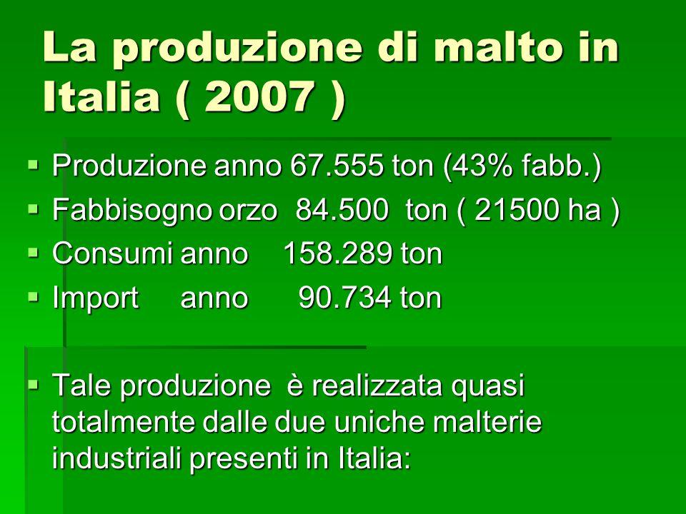La produzione di malto in Italia ( 2007 )