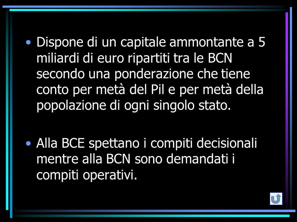 Dispone di un capitale ammontante a 5 miliardi di euro ripartiti tra le BCN secondo una ponderazione che tiene conto per metà del Pil e per metà della popolazione di ogni singolo stato.