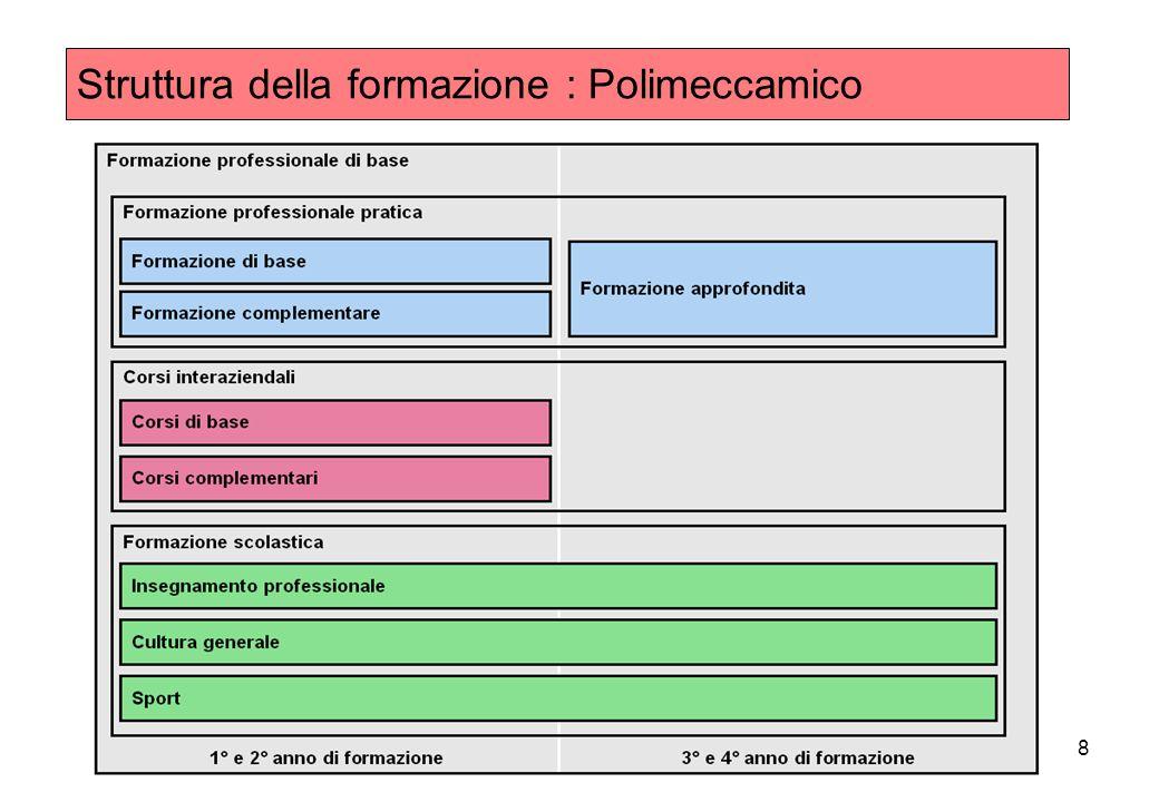Struttura della formazione : Polimeccamico