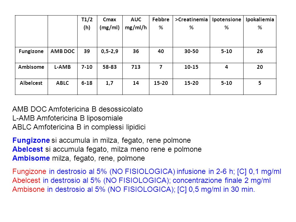 AMB DOC Amfotericina B desossicolato L-AMB Amfotericina B liposomiale
