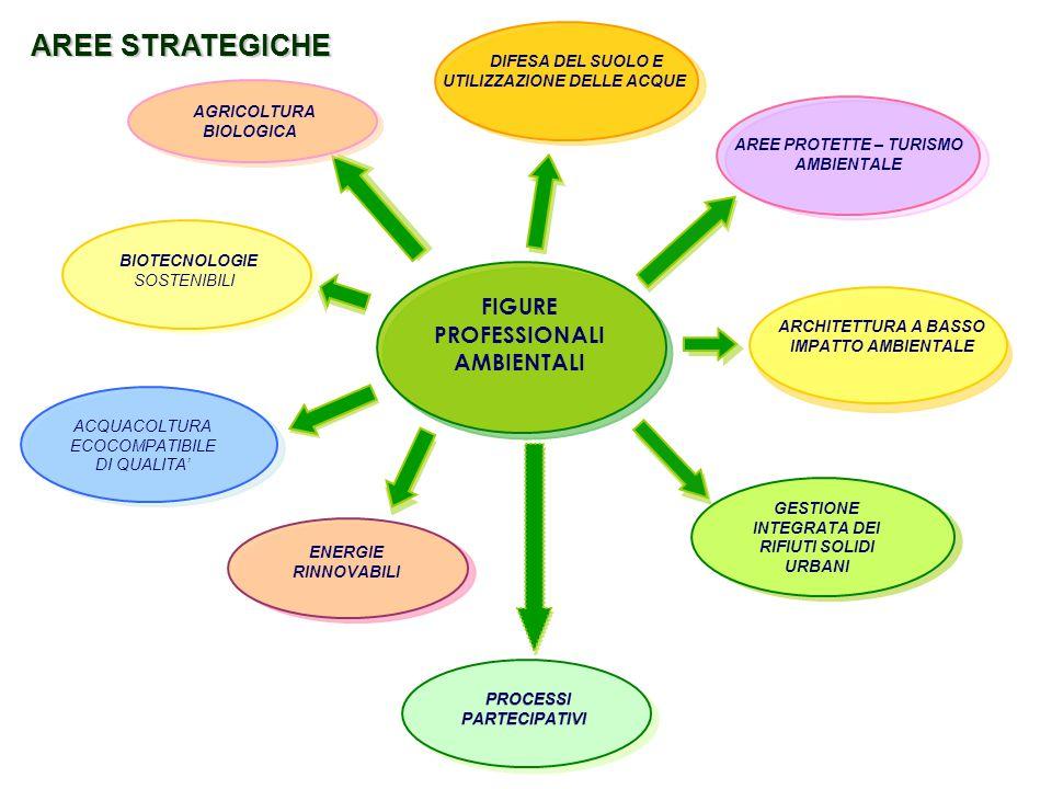 AREE STRATEGICHE FIGURE PROFESSIONALI AMBIENTALI AGRICOLTURA BIOLOGICA