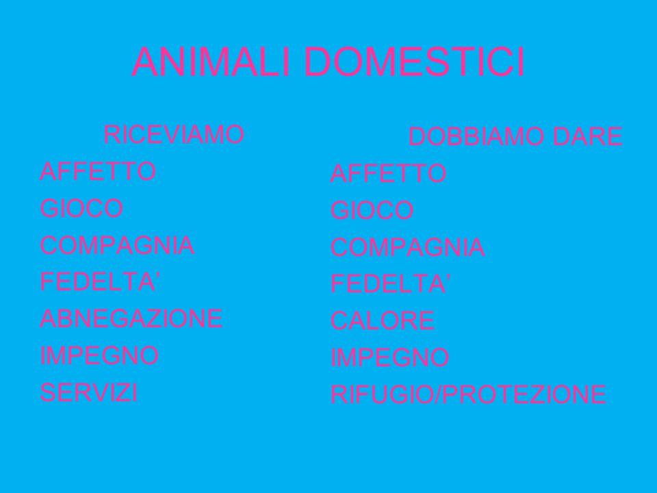 ANIMALI DOMESTICI RICEVIAMO AFFETTO GIOCO COMPAGNIA FEDELTA' ABNEGAZIONE IMPEGNO SERVIZI