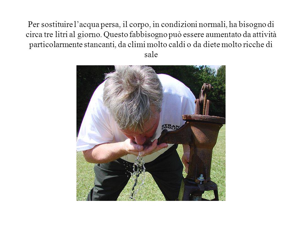Per sostituire l'acqua persa, il corpo, in condizioni normali, ha bisogno di circa tre litri al giorno.