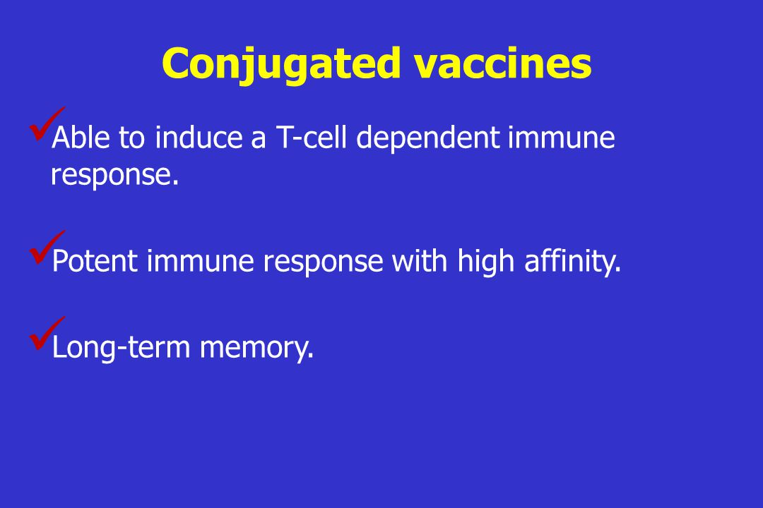 Conjugated vaccines Able to induce a T-cell dependent immune response.