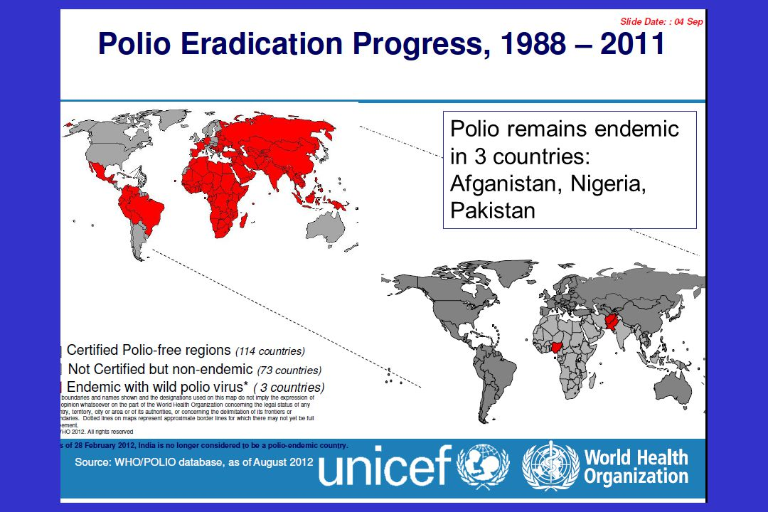 Polio remains endemic in 3 countries: