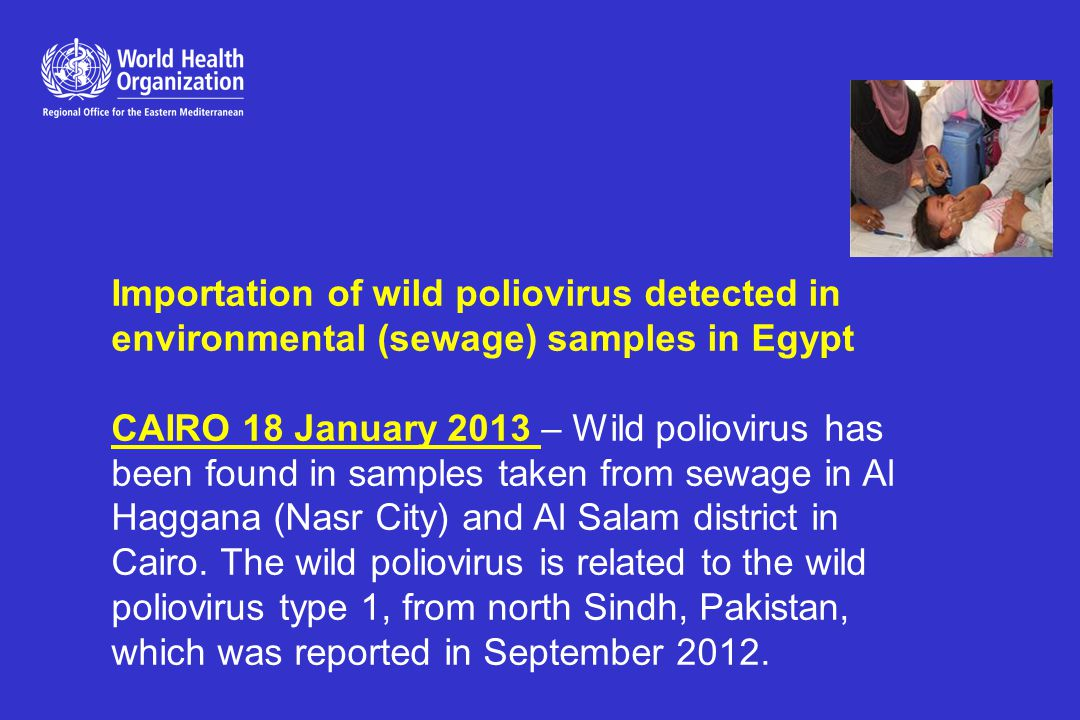 Importation of wild poliovirus detected in environmental (sewage) samples in Egypt