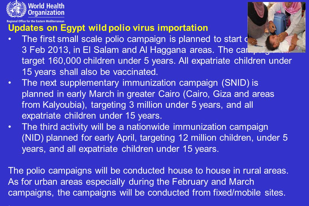 Updates on Egypt wild polio virus importation