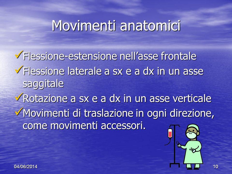 Movimenti anatomici Flessione-estensione nell'asse frontale