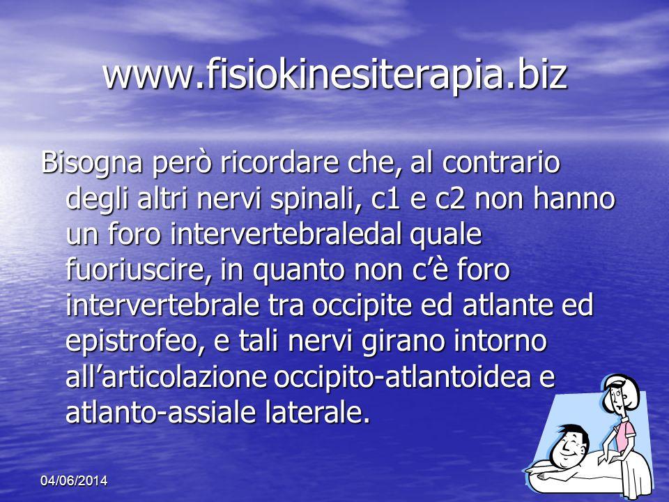 www.fisiokinesiterapia.biz