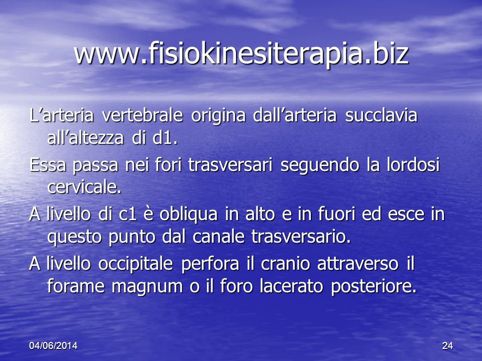 www.fisiokinesiterapia.biz L'arteria vertebrale origina dall'arteria succlavia all'altezza di d1.
