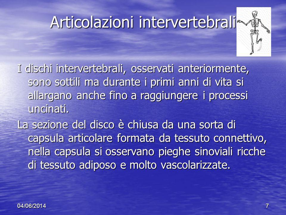 Articolazioni intervertebrali