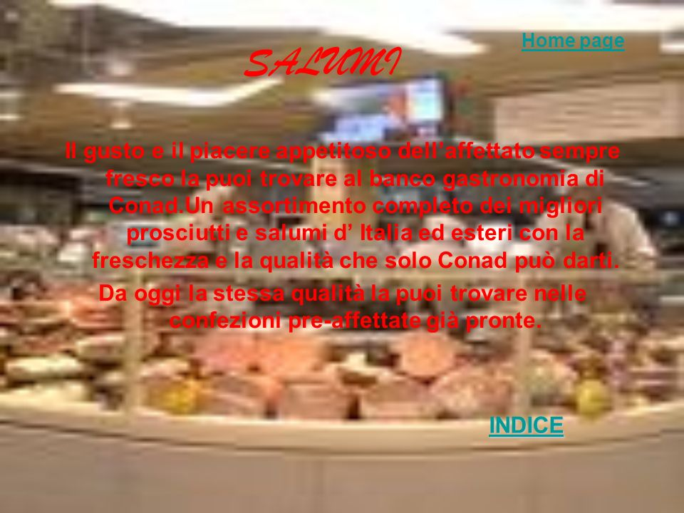 SALUMI Home page.