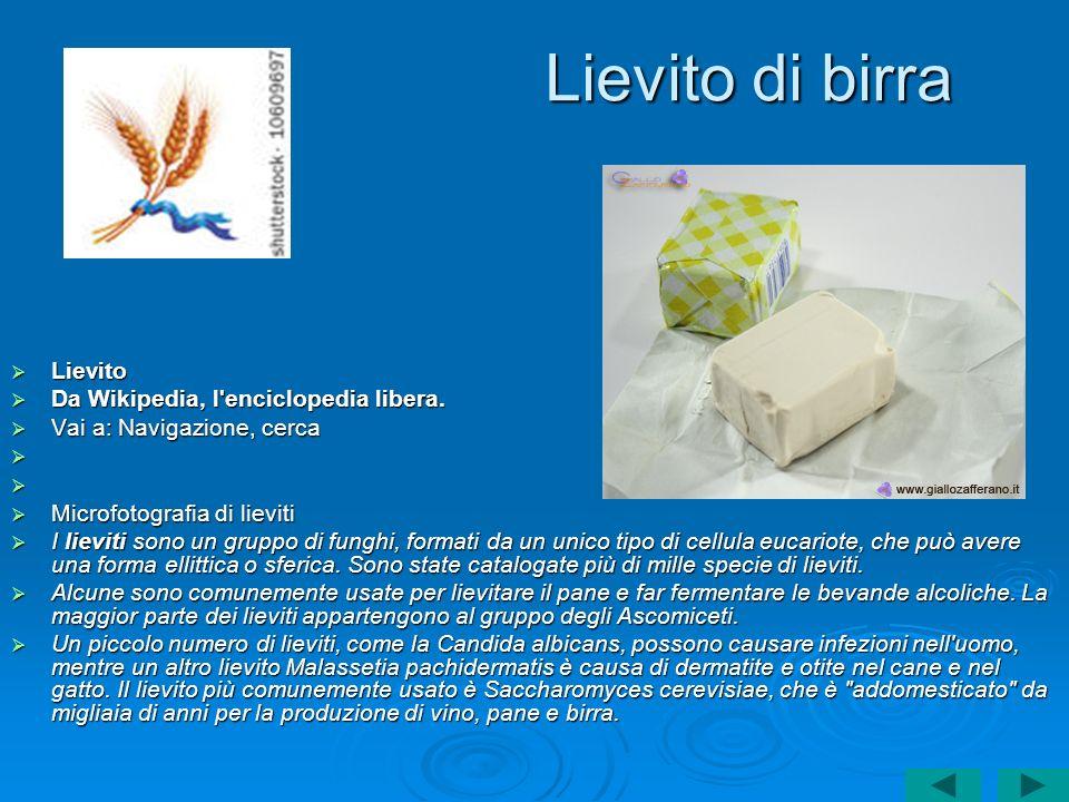 Lievito di birra Lievito Da Wikipedia, l enciclopedia libera.
