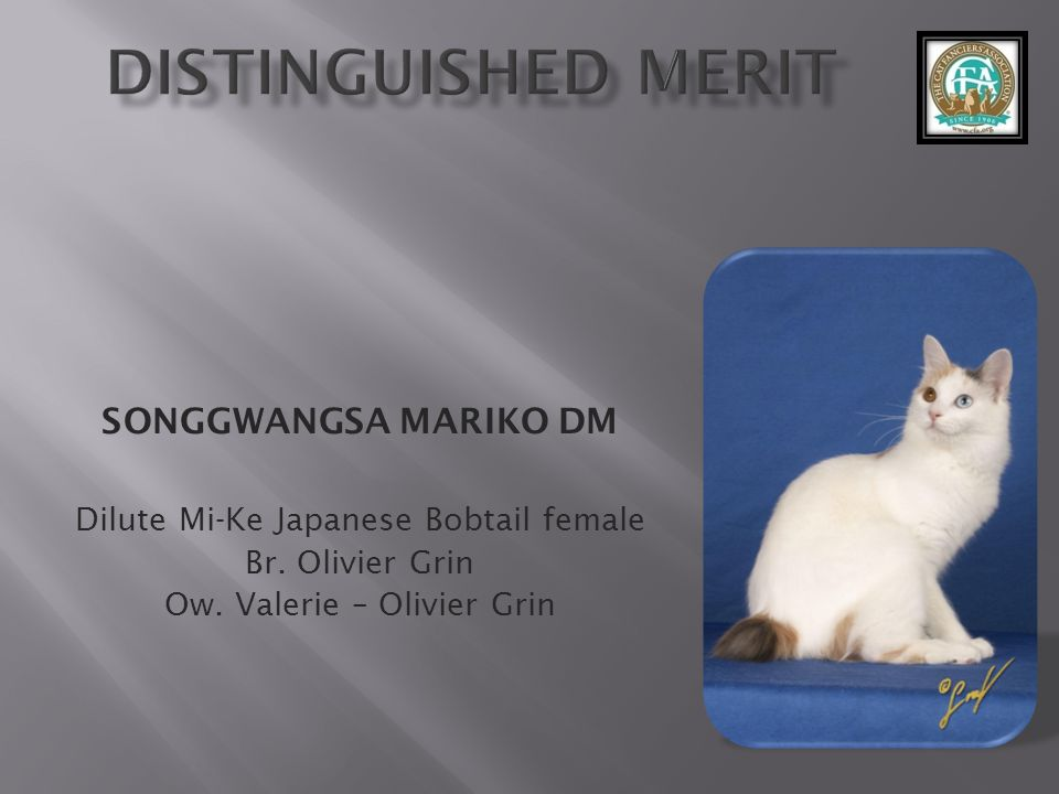 Distinguished Merit SONGGWANGSA MARIKO DM