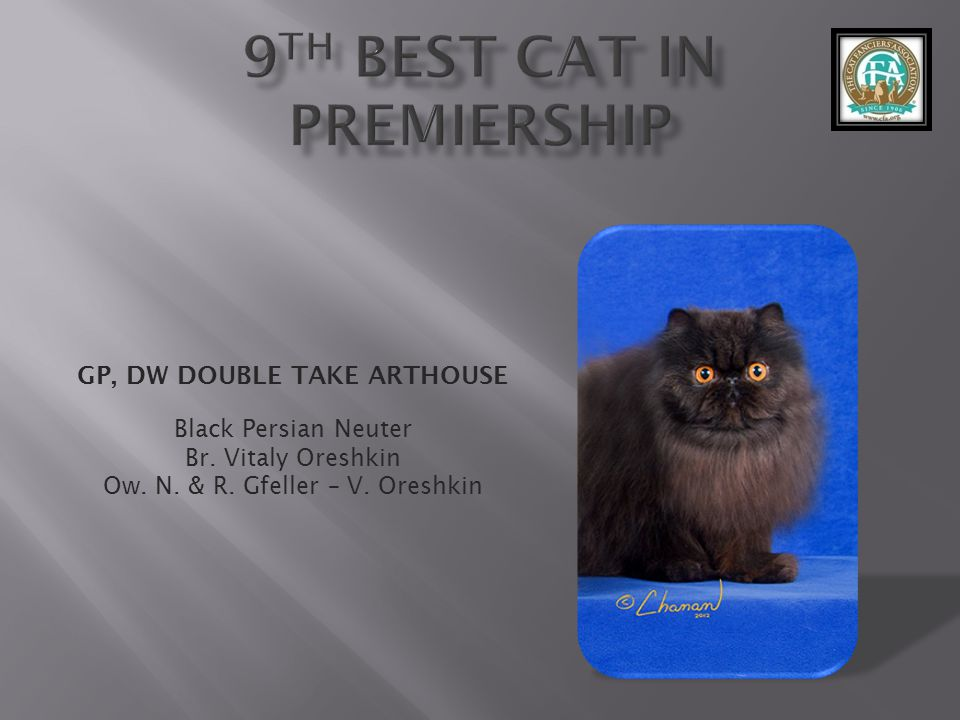 9th best Cat in Premiership