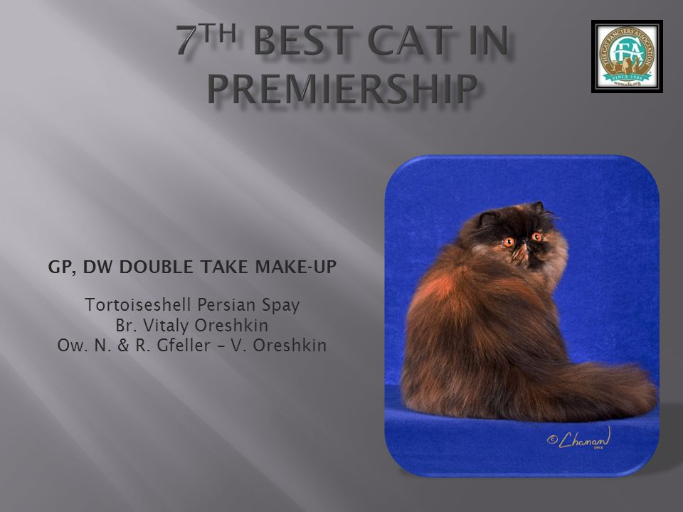 7th best Cat in Premiership