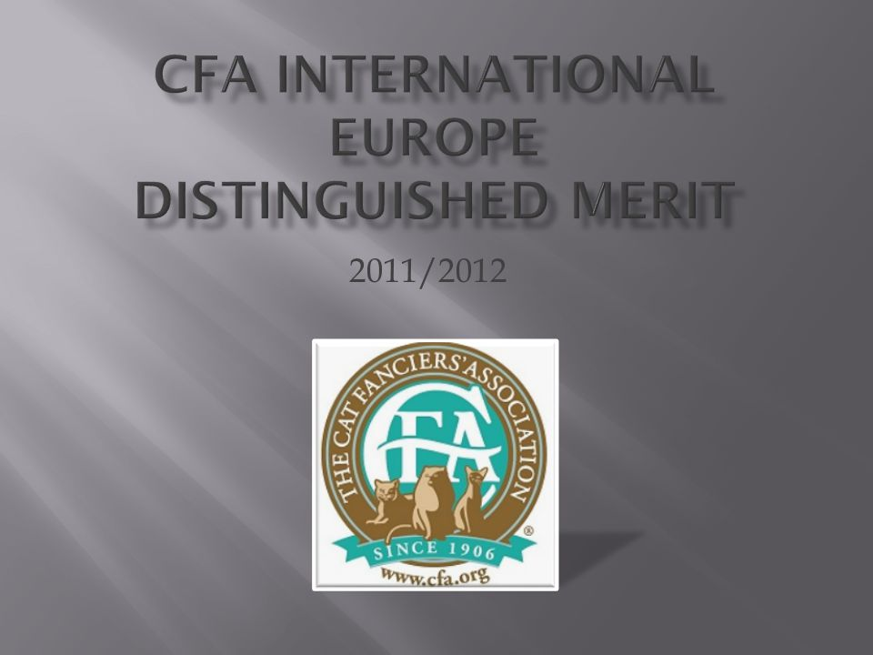 CFA International Europe Distinguished Merit
