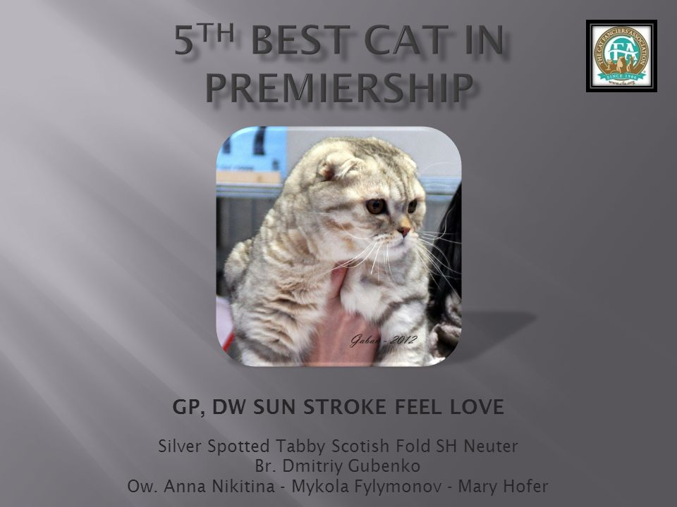 5th best Cat in Premiership