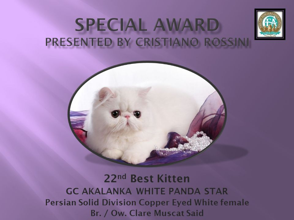 SPECIAL AWARD Presented by Cristiano Rossini