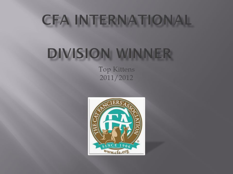 CFA International Division Winner