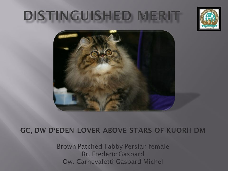 GC, DW D'EDEN LOVER ABOVE STARS OF KUORII DM