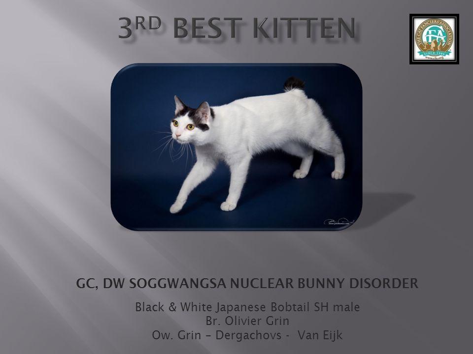 GC, DW SOGGWANGSA NUCLEAR BUNNY DISORDER