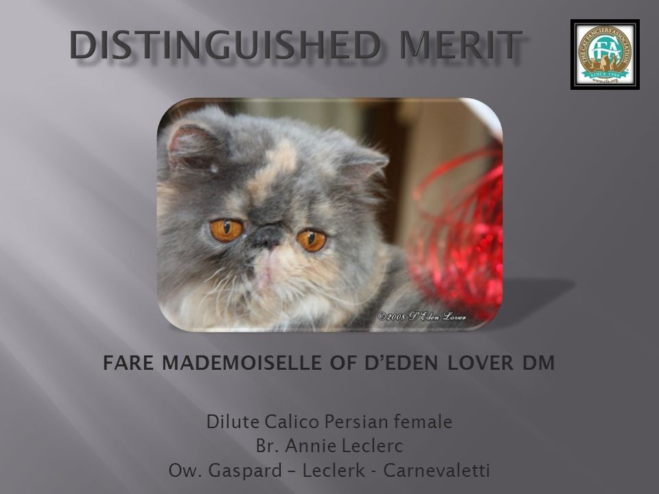 FARE MADEMOISELLE OF D'EDEN LOVER DM