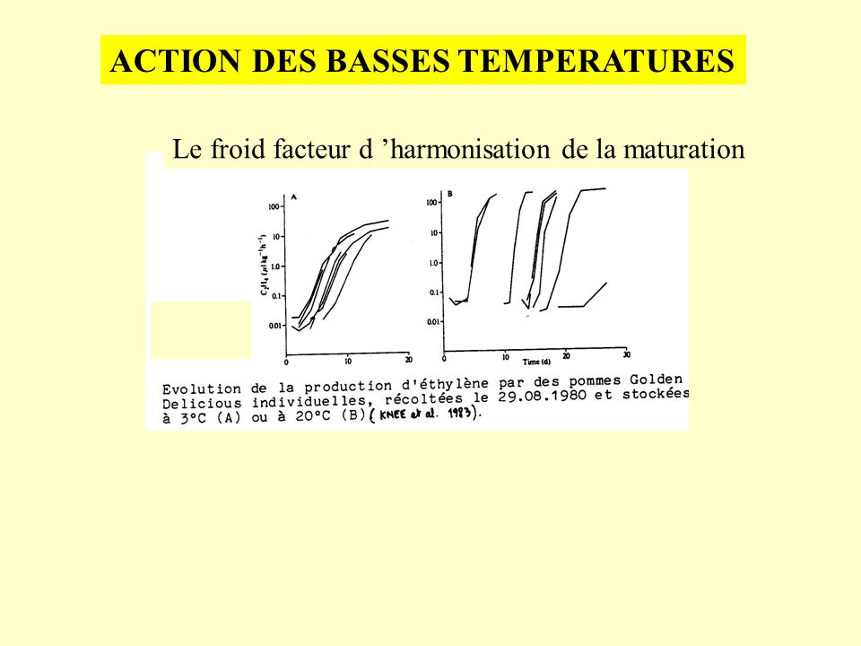 ACTION DES BASSES TEMPERATURES