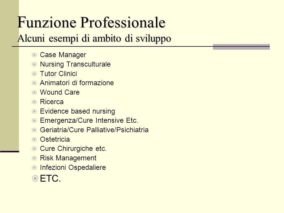 Funzione Professionale Alcuni esempi di ambito di sviluppo
