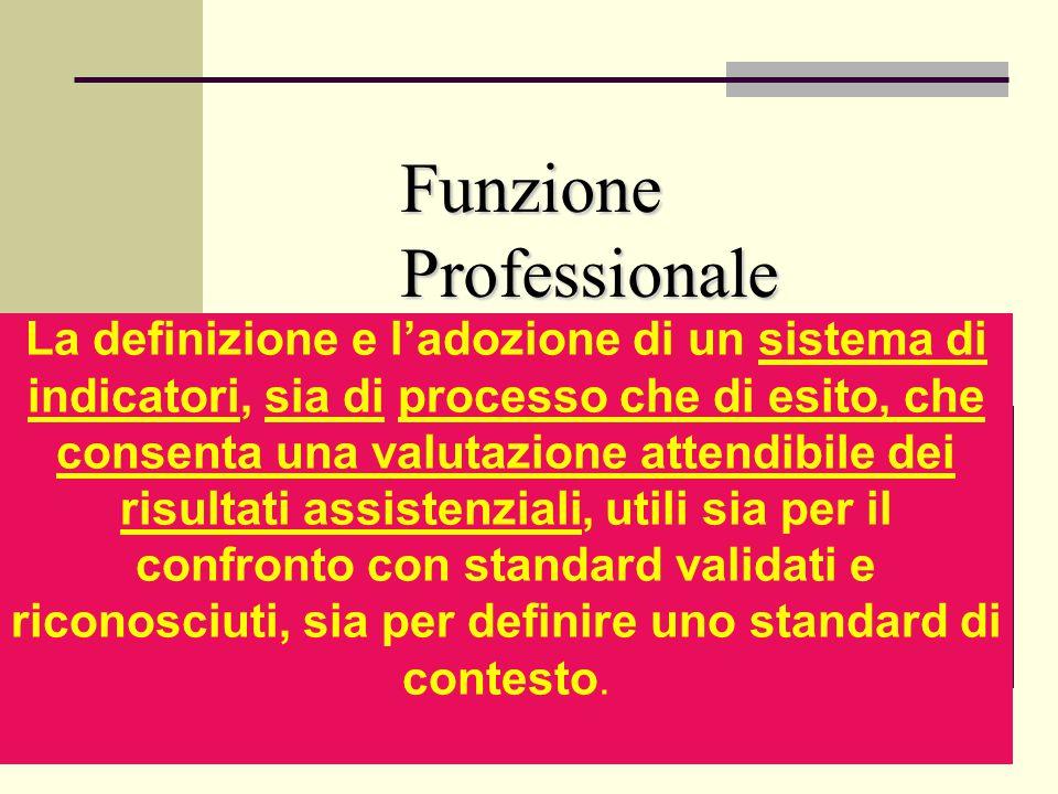 Funzione Professionale