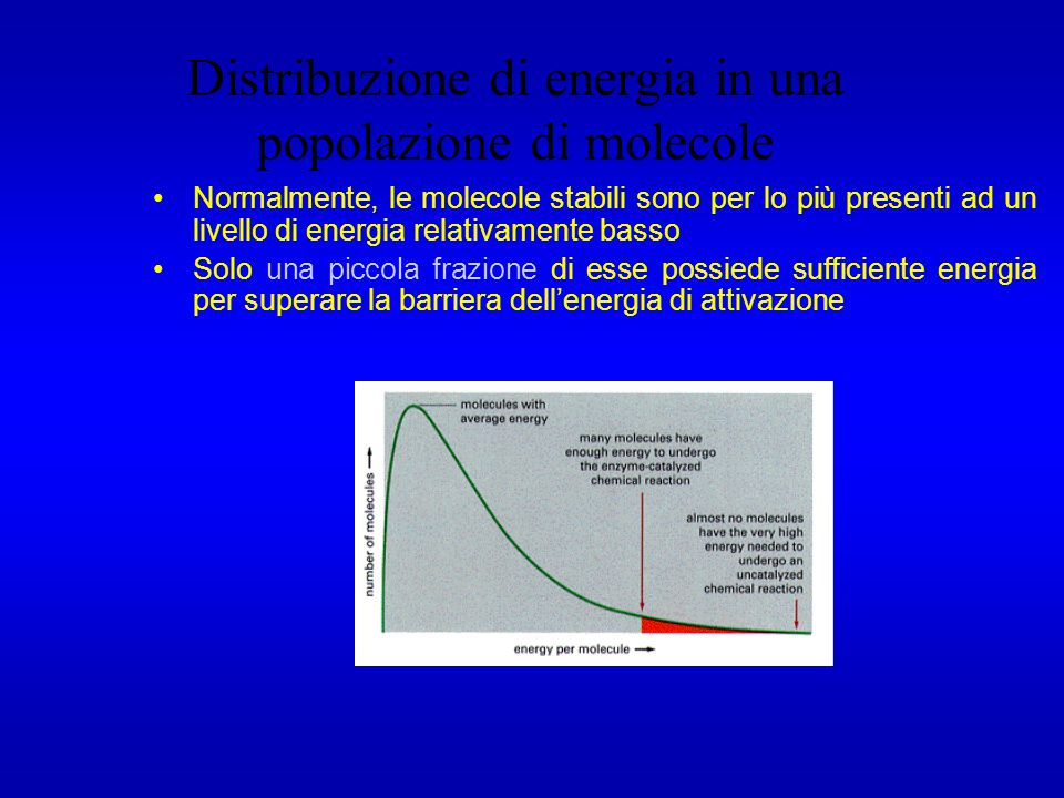 Distribuzione di energia in una popolazione di molecole