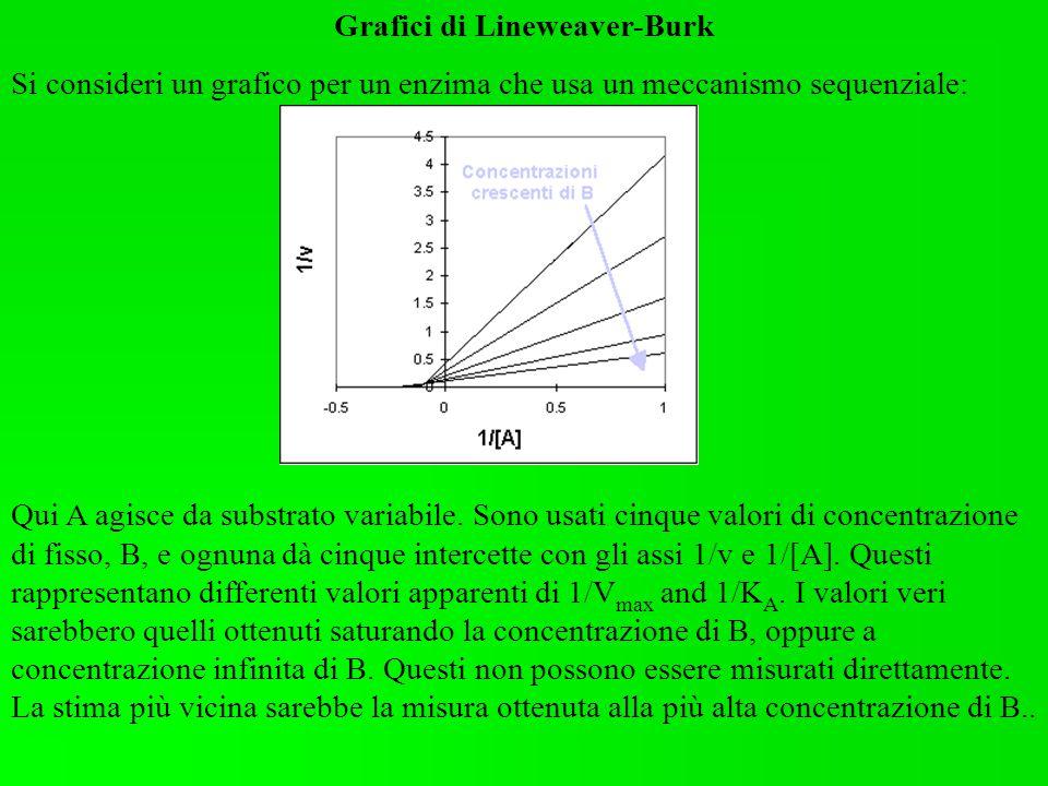 Grafici di Lineweaver-Burk
