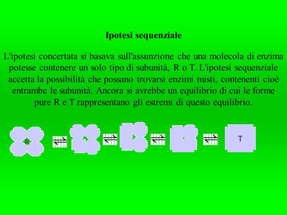 Ipotesi sequenziale