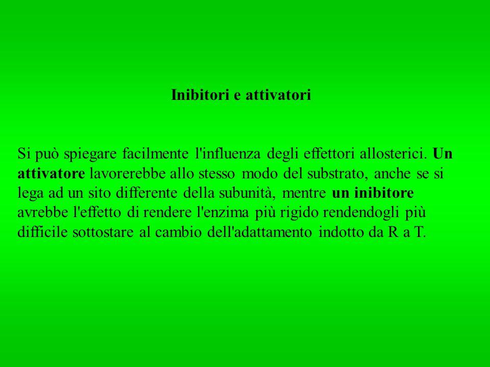 Inibitori e attivatori