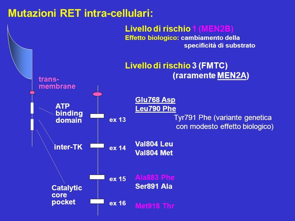 Mutazioni RET intra-cellulari: