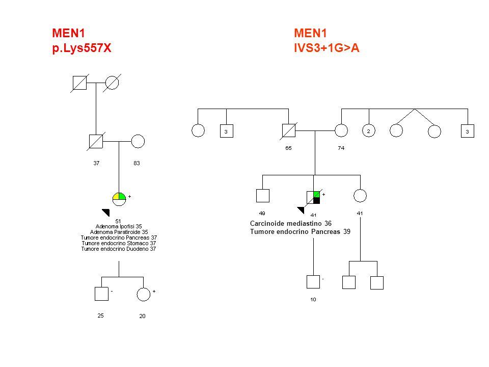 MEN1 p.Lys557X MEN1 IVS3+1G>A Carcinoide mediastino 36
