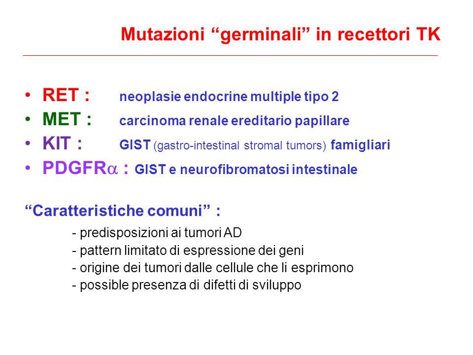 Mutazioni germinali in recettori TK